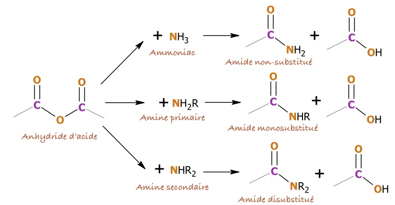 amin synthesise Reactions of amines due to the unshared electron pair, amines can act as both bases and nucleophiles reaction with acids synthesis of aryl halides.